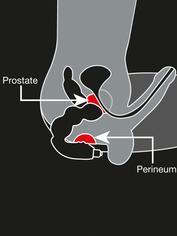 Rocks Off 7 Function Big Boy Vibrating Prostate Massager, Black, hi-res