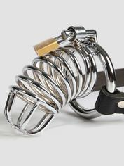 Fetish Fantasy Extreme Chastity Belt and Cock Cage, Silver, hi-res