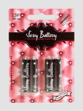 AAA Batteries (4 Count)