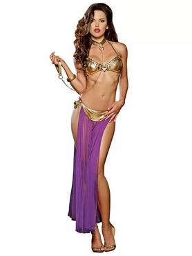Dreamgirl Gold Captive Princess Costume