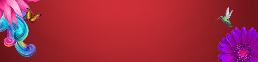 W41-Val---Best-Sellers-banner-Red-bg-Desktop