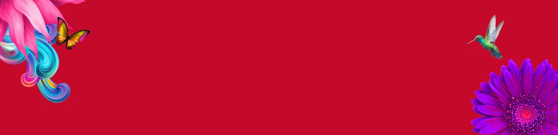 W41-Val---Best-Sellers-banner-Red-bg-Desktop_1